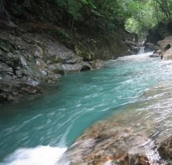 四万川の清流